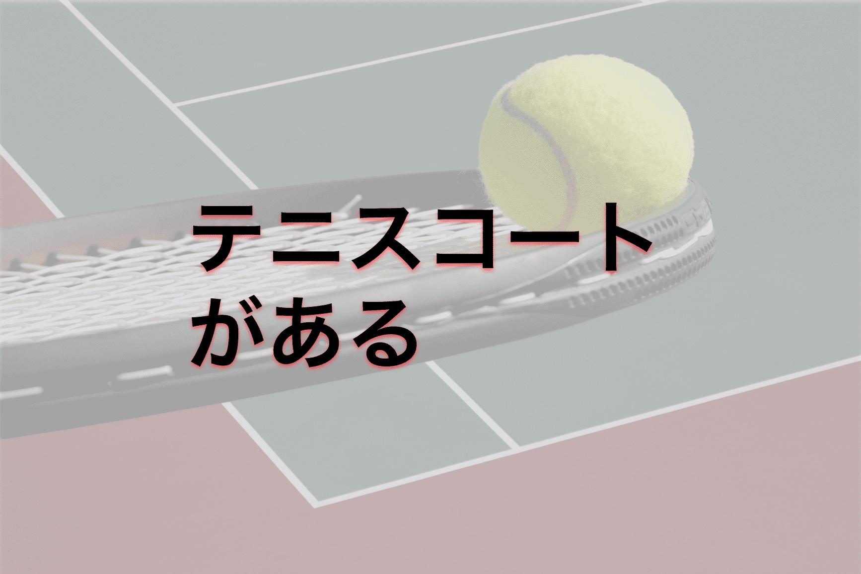 合宿免許 テニス